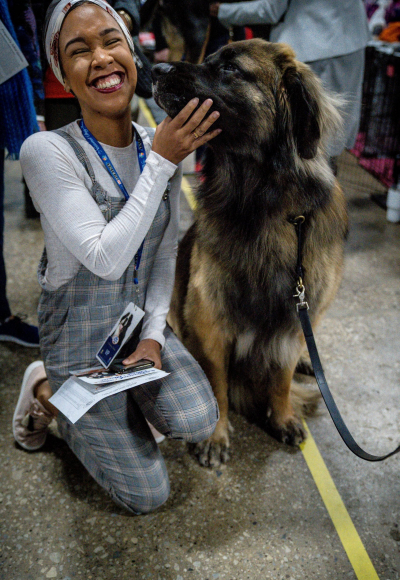Thankful for Our Furry Friends | National Dog Show