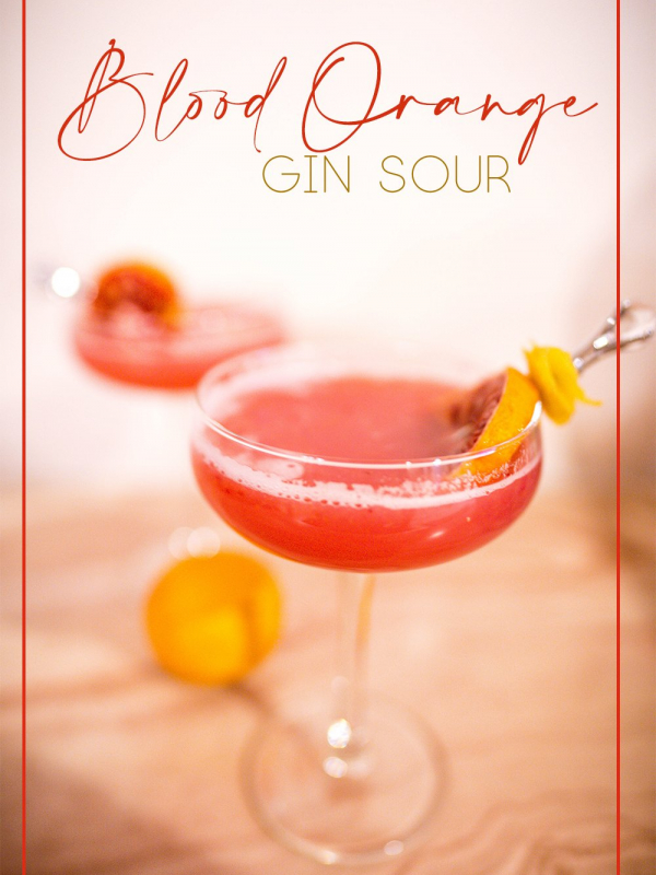 Blood Orange Gin Sour