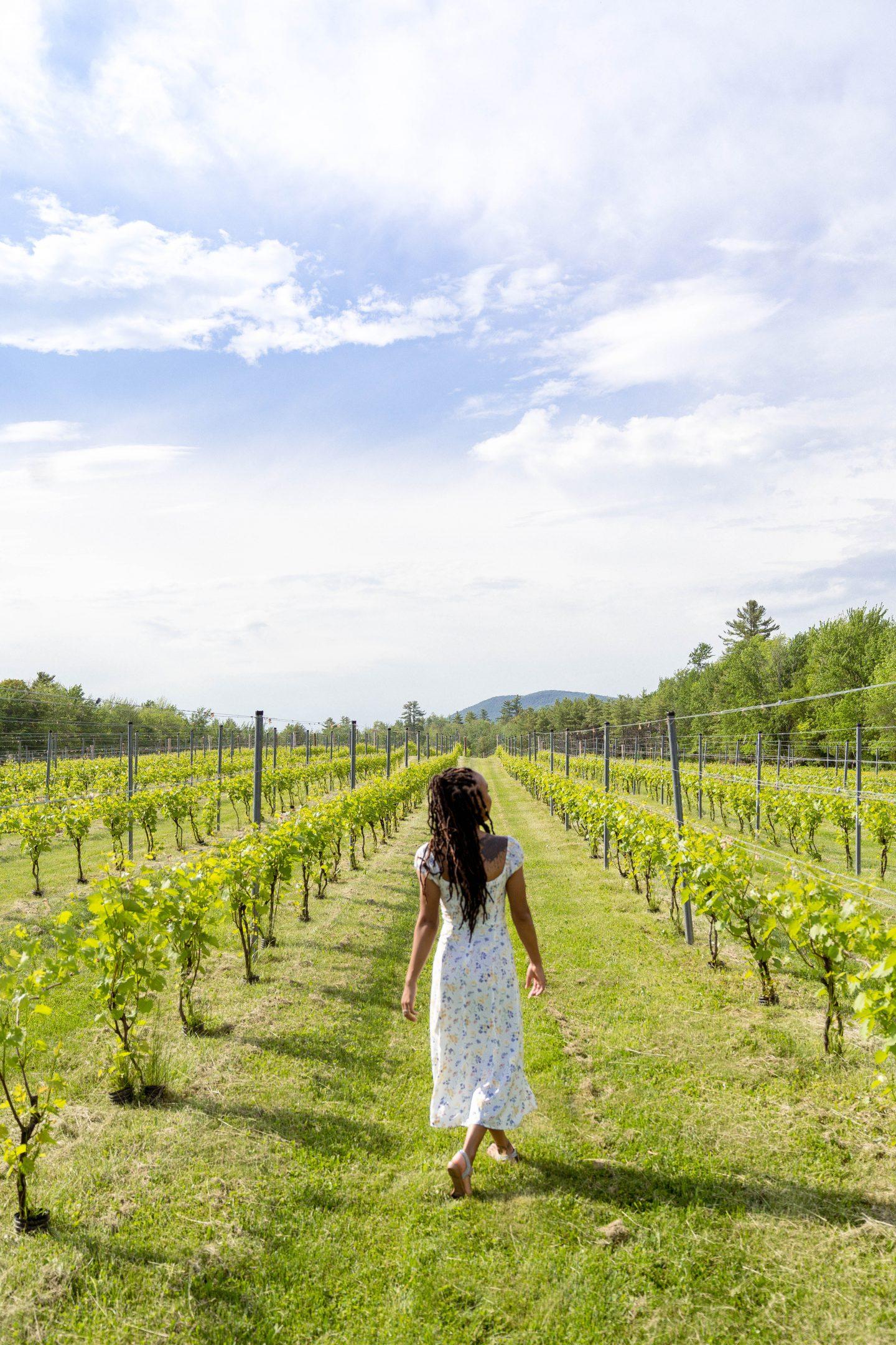 livinglesh maine cellardoor winery vineyard