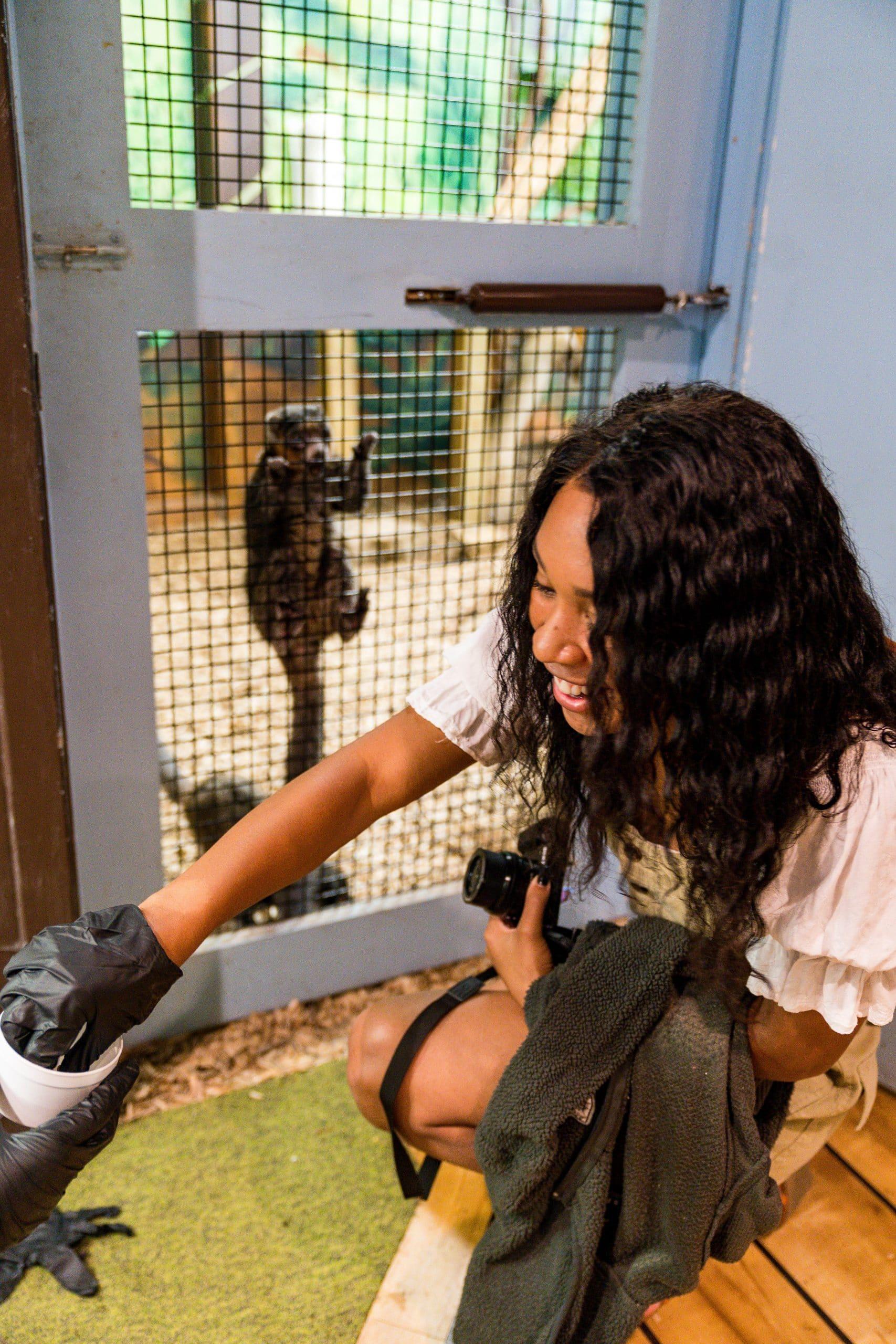 livinglesh behind the scenes oglebay zoo