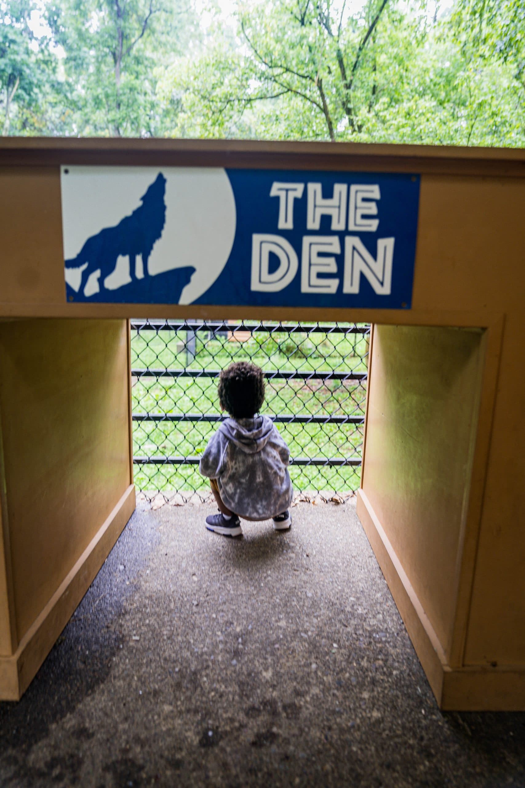 livinglesh behind the scenes tour oglebay zoo west virginia